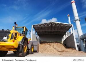 Auf Pelletbetrieb umgerüstete Kohlekraftwerke haben einen schier unerschöpflichen Biomassehunger!